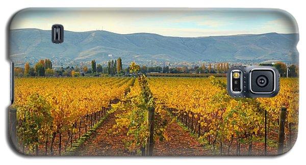 Golden Vineyards Galaxy S5 Case by Lynn Hopwood