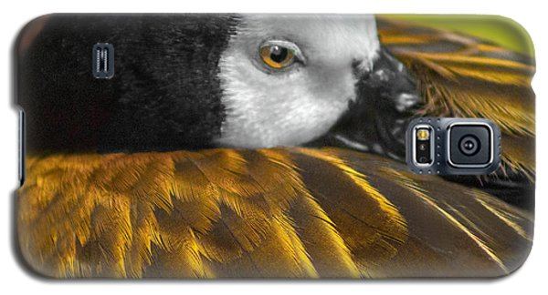 Golden Wings Galaxy S5 Case by Marion Johnson