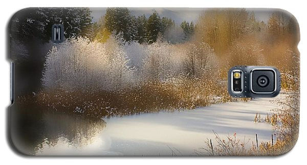 Golden Winter Galaxy S5 Case by Sonya Lang