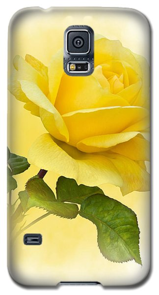 Golden Yellow Rose Galaxy S5 Case by Jane McIlroy