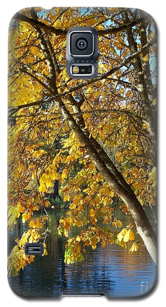 Galaxy S5 Case featuring the photograph Golden Zen by Chalet Roome-Rigdon