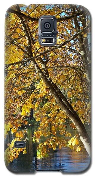 Golden Zen Galaxy S5 Case by Chalet Roome-Rigdon