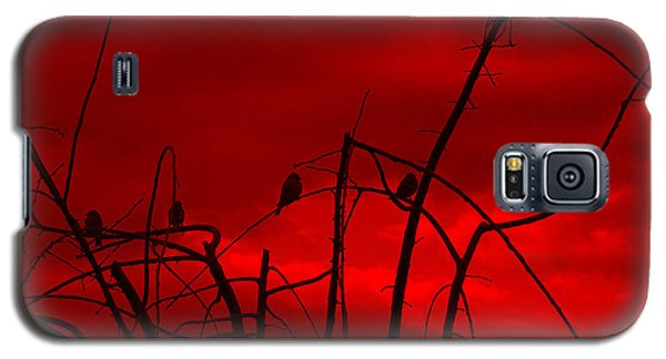 Galaxy S5 Case featuring the photograph Goldfinch Against Red by Heidi Manly