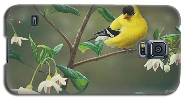 Finch Galaxy S5 Case - Goldfinch And Snowbells by Peter Mathios