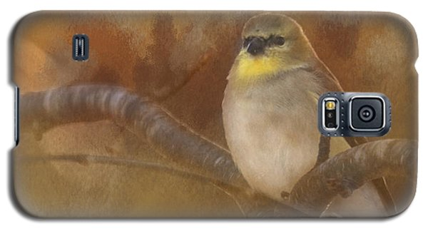 Resting Goldfinch Galaxy S5 Case