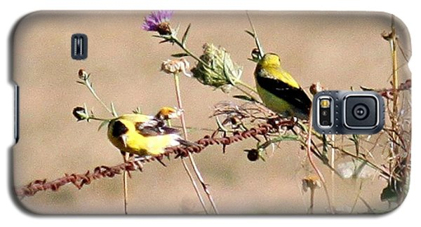 Galaxy S5 Case featuring the photograph Goldfinch Quest 1 by Erica Hanel