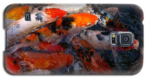 Goldfish Shimmer Galaxy S5 Case