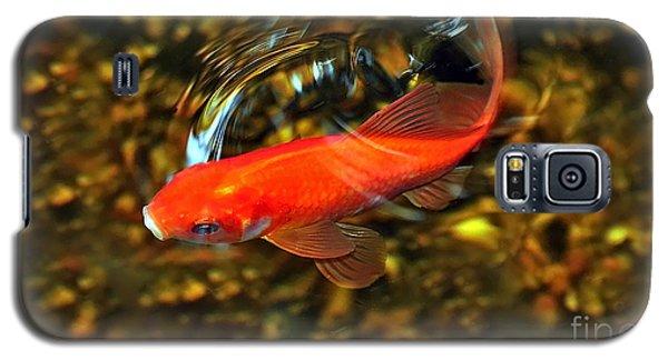 Goldfish Swimming Galaxy S5 Case