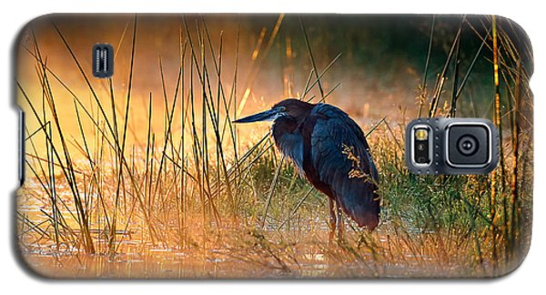 Goliath Heron With Sunrise Over Misty River Galaxy S5 Case