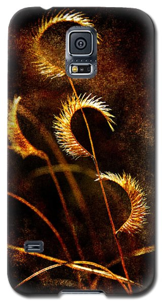 Gone To Seed Galaxy S5 Case by Karen Slagle