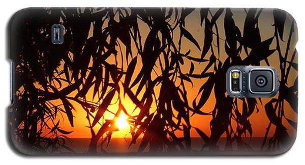 Good Morning Lake Michigan Galaxy S5 Case by Tiffany Erdman