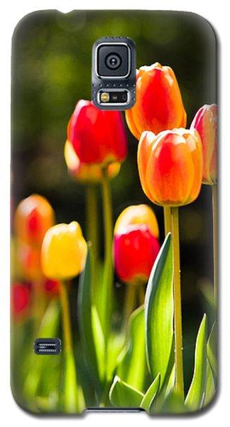 Good Morning Galaxy S5 Case