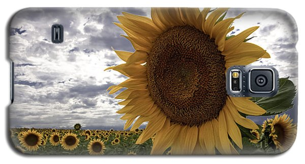 Galaxy S5 Case featuring the photograph Good Morning Sunshine by Kristal Kraft