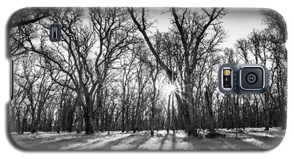 Good Morning Sunshine Galaxy S5 Case by Randy Wood