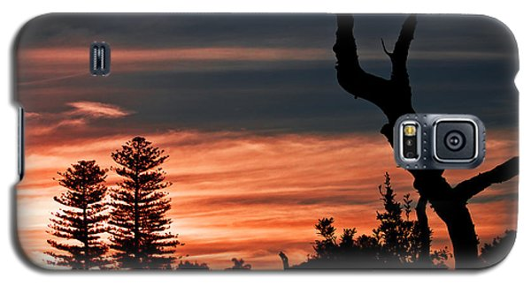 Good Night Trees Galaxy S5 Case by Miroslava Jurcik