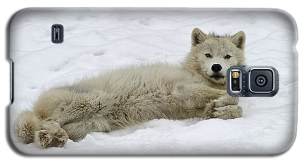 Good Wolfie ... Galaxy S5 Case