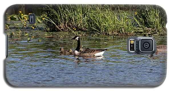 Galaxy S5 Case featuring the photograph Goose Family In The Water by Leif Sohlman