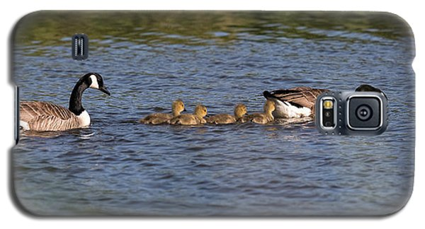 Galaxy S5 Case featuring the photograph Goose Family by Leif Sohlman