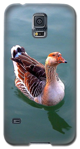Goose Galaxy S5 Case by Marc Philippe Joly