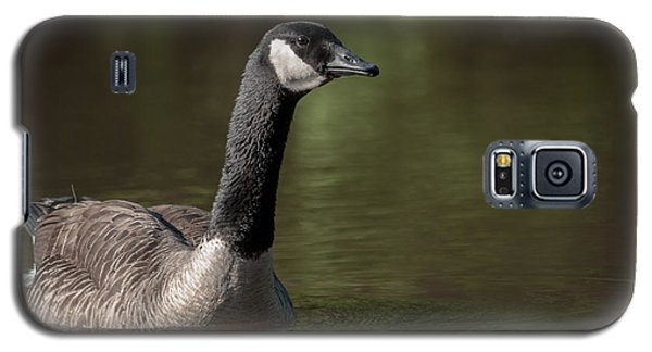 Goose On Pond Galaxy S5 Case