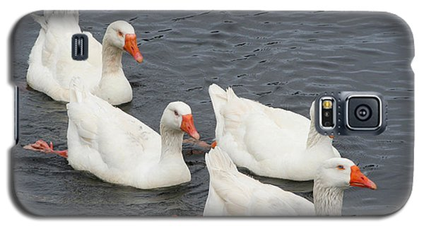 Galaxy S5 Case featuring the photograph Goose Parade by Bob and Jan Shriner