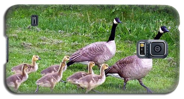 Goose Step Galaxy S5 Case