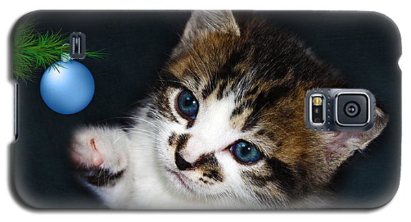Gorgeous Christmas Kitten Galaxy S5 Case by Terri Waters