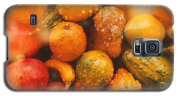 Galaxy S5 Case featuring the photograph Gorgeous Gourds by Ira Shander