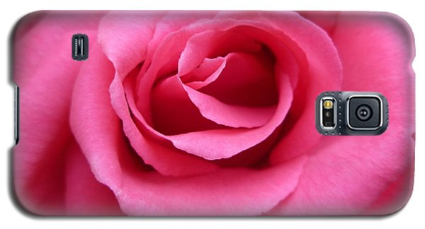 Gorgeous Pink Rose Galaxy S5 Case by Vicki Spindler