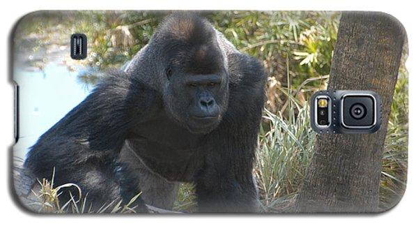 Gorilla 01 Galaxy S5 Case by Donald Williams