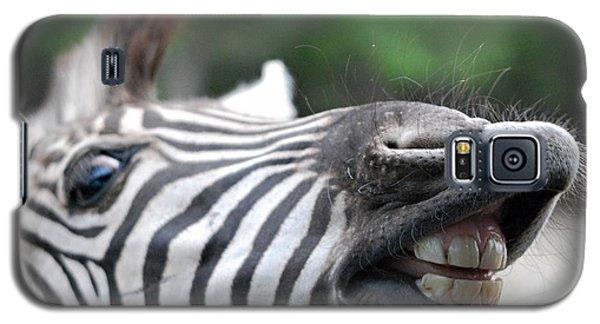 Got A Tic Tac? Galaxy S5 Case
