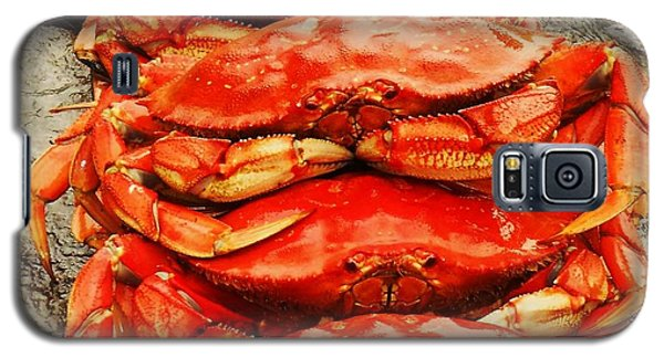 Got Crab? Galaxy S5 Case by Karen Horn