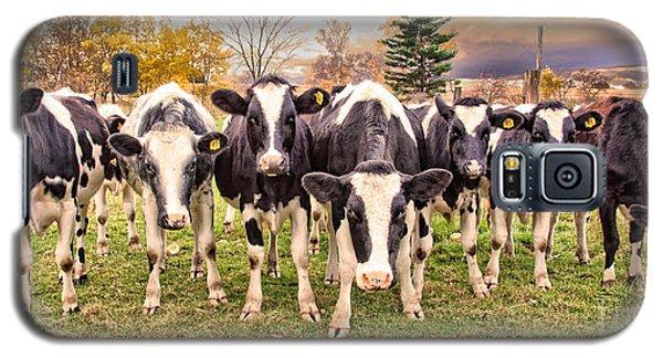 Got Grain? Galaxy S5 Case