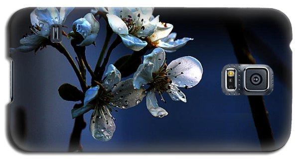 Got The Blues Galaxy S5 Case by Silke Brubaker