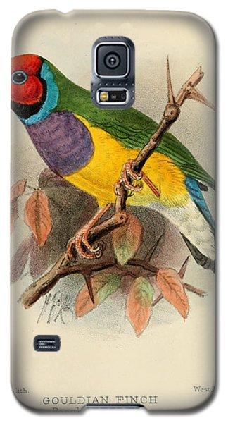 Gouldian Finch Galaxy S5 Case by Rob Dreyer