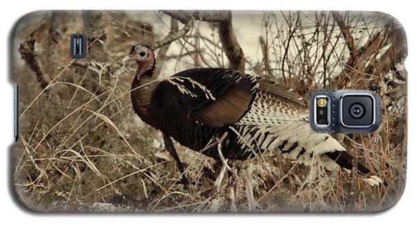 Gould's Wild Turkey Xii Galaxy S5 Case