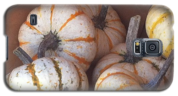 Galaxy S5 Case featuring the photograph Gourd Harvest by Denyse Duhaime
