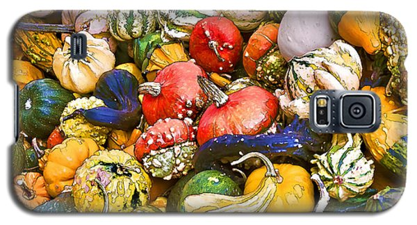 Gourds And Pumpkins At The Farmers Market Galaxy S5 Case by Peggy Collins