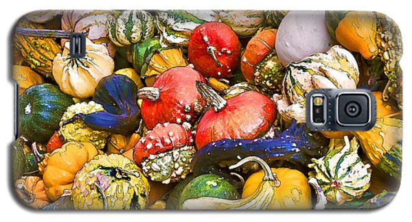 Gourds And Pumpkins At The Farmers Market Galaxy S5 Case