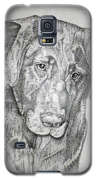 Gozar Galaxy S5 Case by Mayhem Mediums