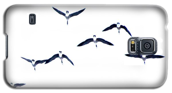 Galaxy S5 Case featuring the photograph Grace In Flight by Brian Davis