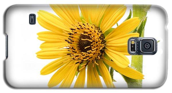 Graceful Beauty II Galaxy S5 Case