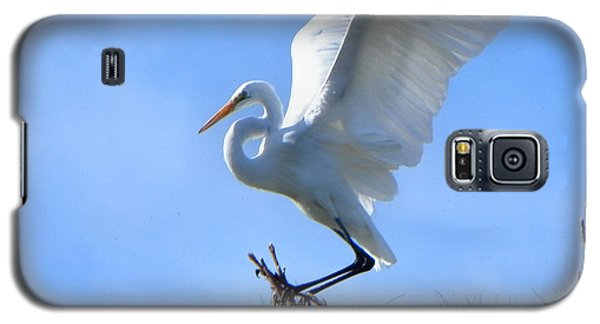 Galaxy S5 Case featuring the photograph Graceful Landing by Deb Halloran