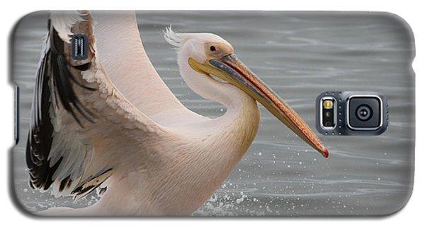 Graceful Landing Galaxy S5 Case