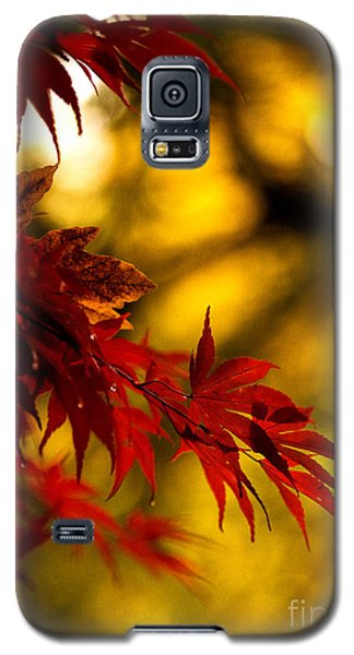 Graceful Leaves Galaxy S5 Case