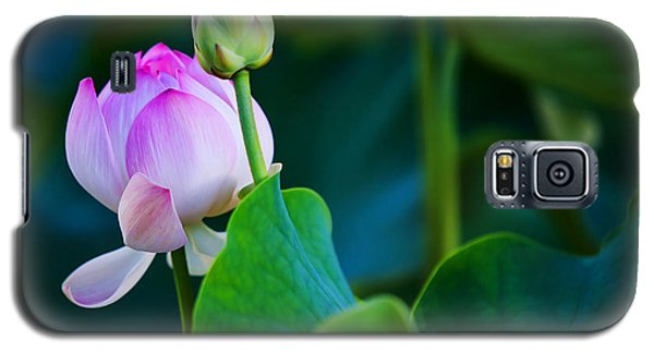 Graceful Lotus. Pamplemousses Botanical Garden. Mauritius Galaxy S5 Case by Jenny Rainbow