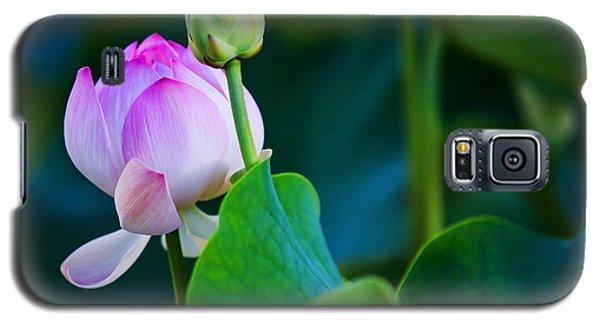 Graceful Lotus. Pamplemousses Botanical Garden. Mauritius Galaxy S5 Case