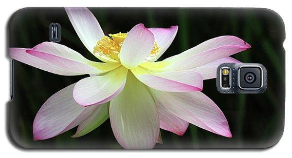 Graceful Lotus Galaxy S5 Case