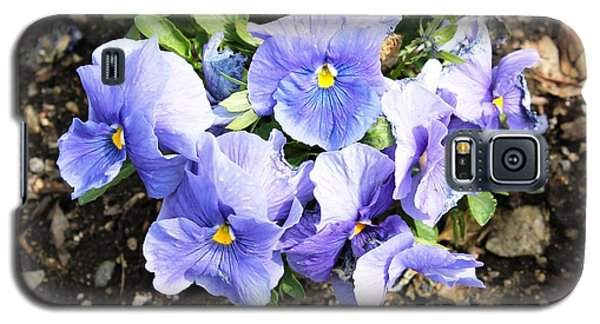 Galaxy S5 Case featuring the photograph Graceful Pansies by Judy Palkimas