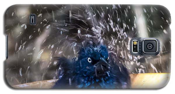 Grackle Bath Galaxy S5 Case
